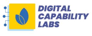 Digital Capability Labs